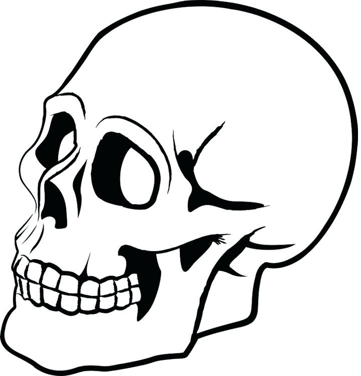 720x750 Skelaton Drawing Skull Human Skeleton Drawing Bone Art Cartoon