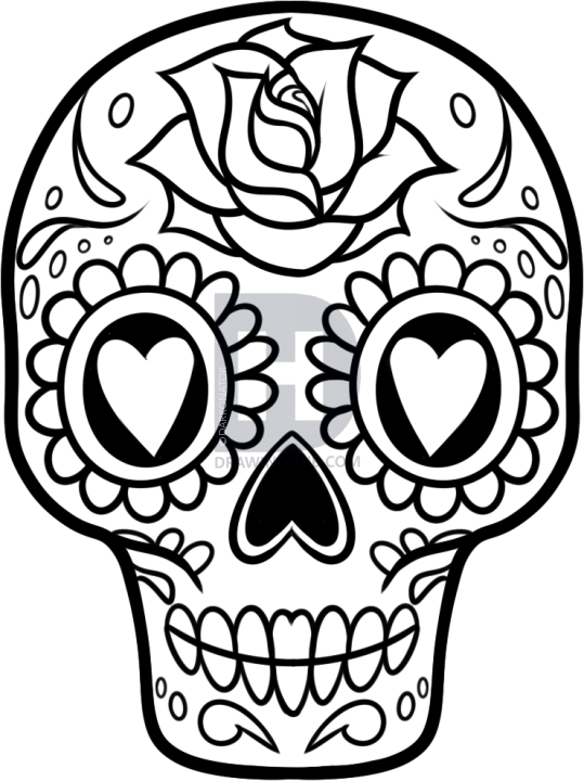 539x720 Skull Art Drawings Group With Items