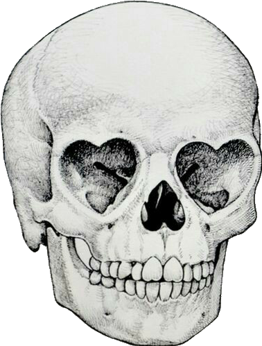 378x499 Collection Of Free Drawing Tumblr Skull Download On Ui Ex