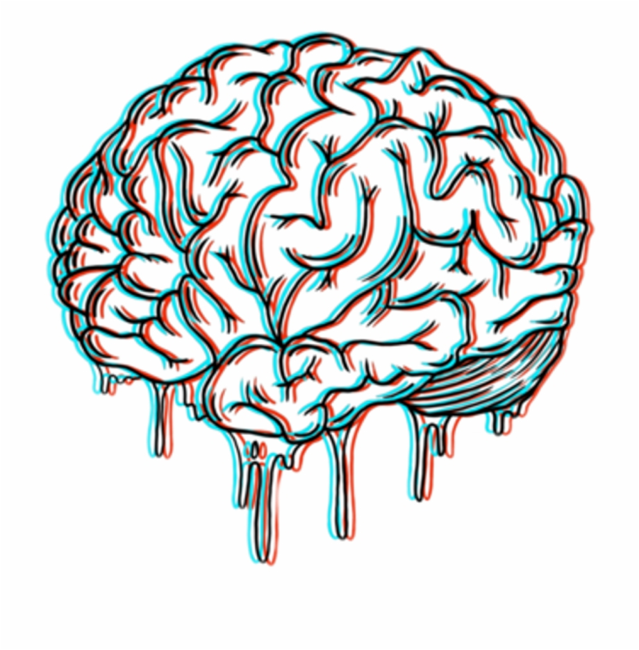 920x937 Huge Collection Of Brain Drawing Tumblr Download More