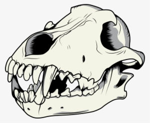 300x246 Skull Tumblr Png, Transparent Skull Tumblr Png Image Free Download