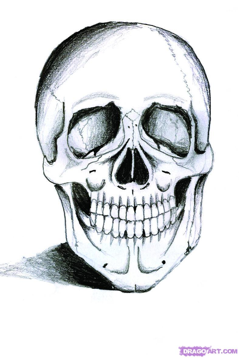 787x1178 How To Draw A Realistic Skull, Step