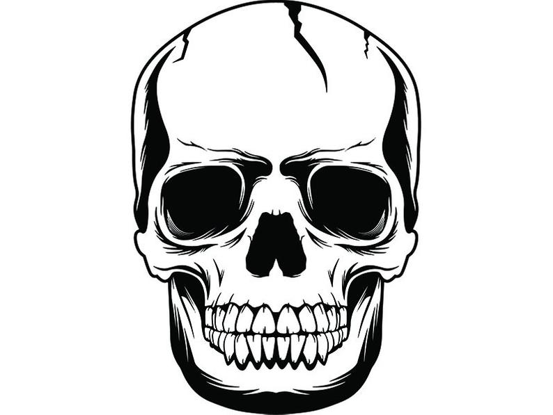 Skull Face Drawing Free Download Best Skull Face Drawing On