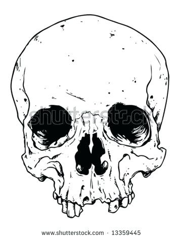 360x470 Drawing Vector Isolated Skull Stock Outline Outlines Sugar Printable