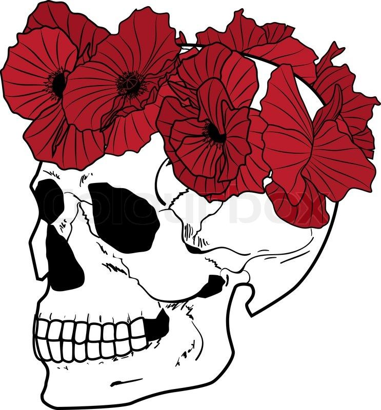 743x800 Skull And Wreath Of Poppies Stock Vector On Colourbox Tattoos