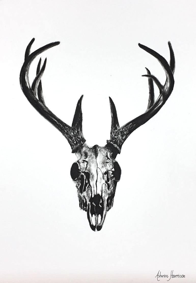 770x1107 Deer Skull Black White Sketch Illustrations Drawing Cow