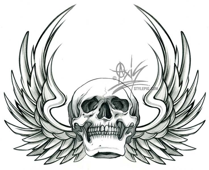 Skull With Wings Drawing
