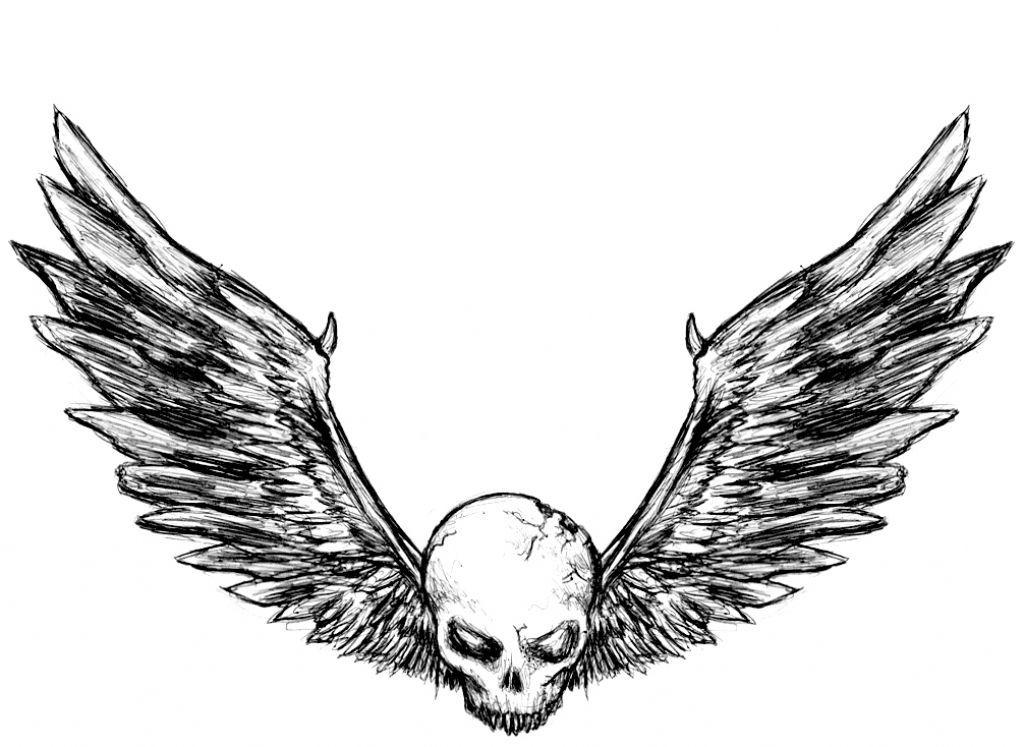 1024x747 bat wings skull tattoo picture skull wings skull and wings tattoo