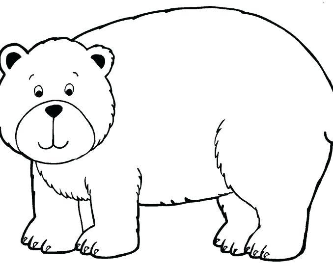 Sleeping Bear Drawing Free Download Best Sleeping Bear
