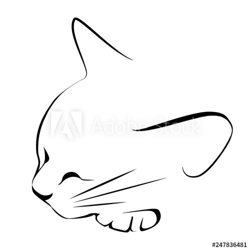 500x500 Logo Drawing Sketch Sleeping Black White Cat