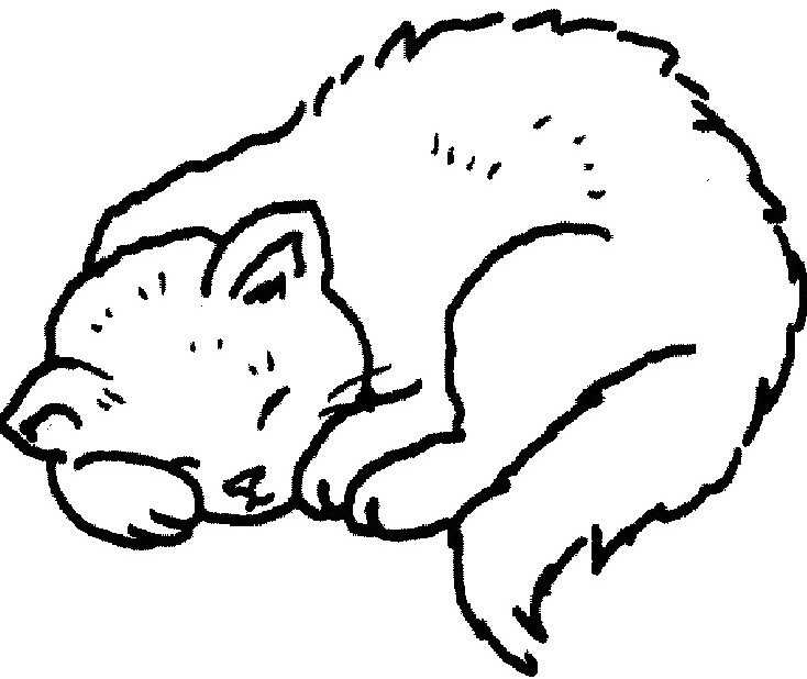 734x618 Sleeping Cat Coloring Pages