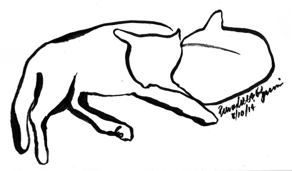 1000x586 Line Art Sketch Of Cat Archives The Creative Cat
