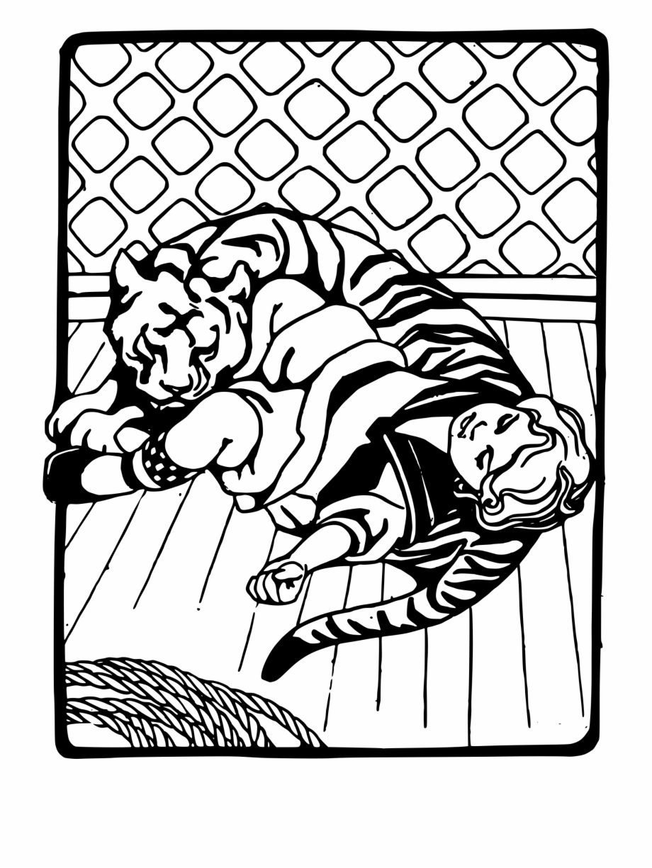 920x1225 Girl Sleeping With Tiger Free Png Images Clipart Download