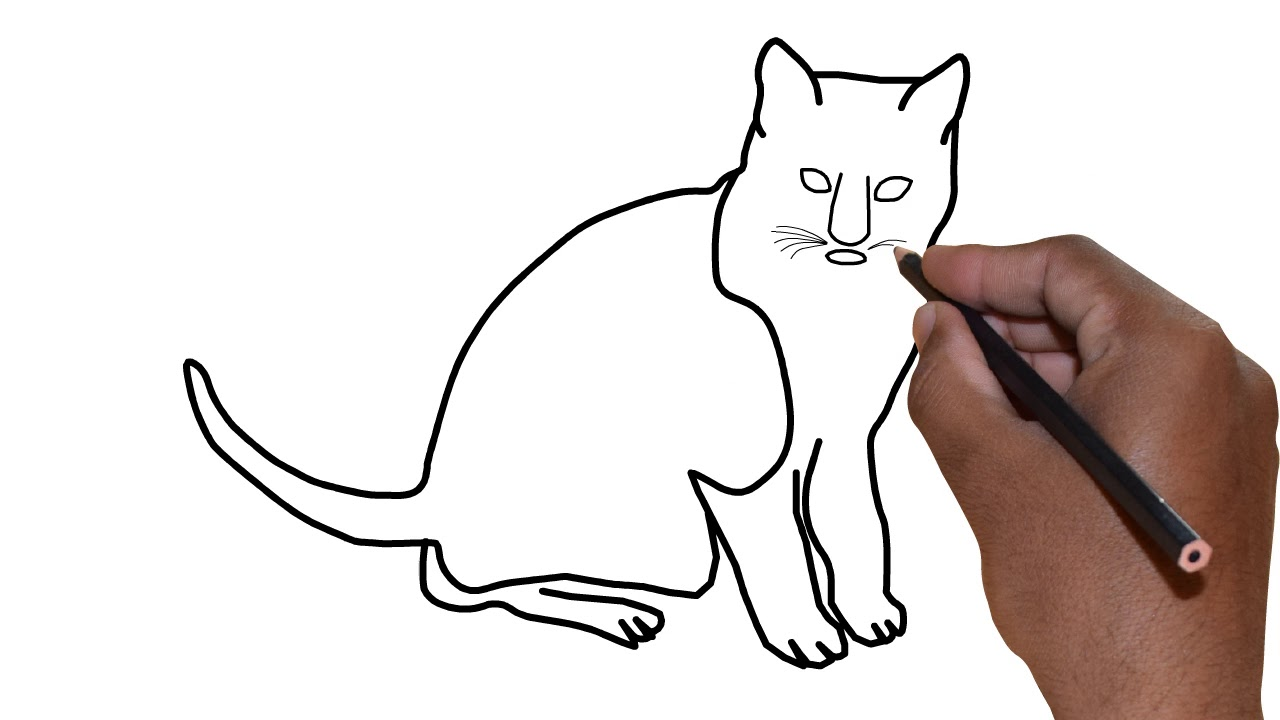 1280x720 How Draw A Cat Drawing Videos For Kids Learning Drunk Drawing