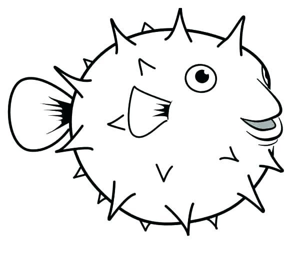 Small Fish Drawing