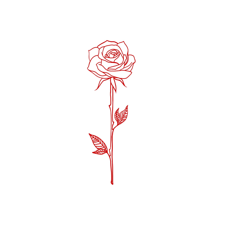 2448x2448 freyaslefler tattoos tattoos, rose tattoos, rose drawing tattoo