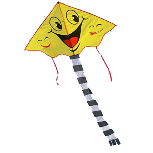 600x600 smiling face kite two patterns cartoon kite sports beach kite