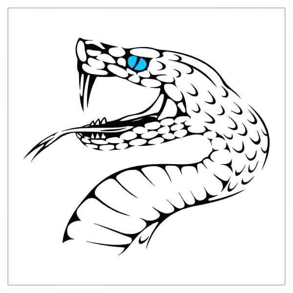 600x600 how to draw a snake tongue drawing snake heads draw snake tongue