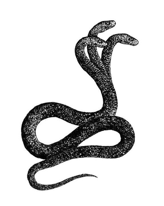 Snake Drawings In Pencil