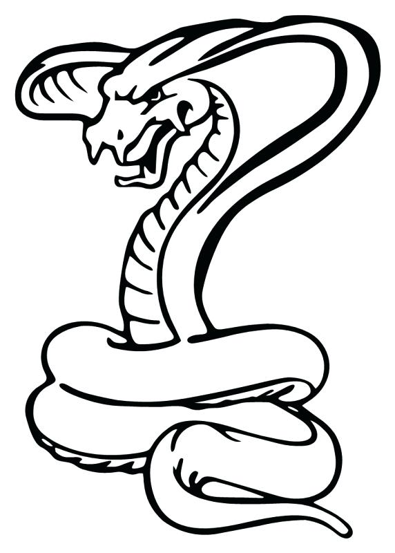 572x800 snake head drawings snake suggestions for snake download snake