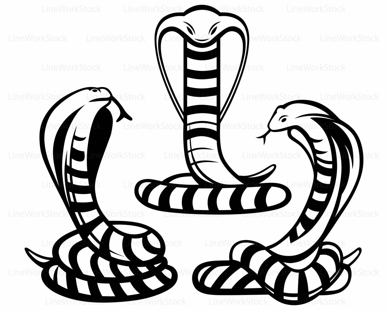 Snake Line Drawing