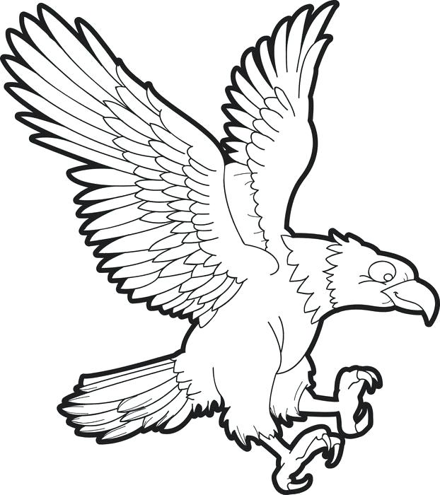 Soaring Eagle Drawing | Free download best Soaring Eagle