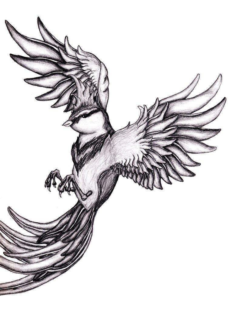 Sparrow Tattoo Drawing
