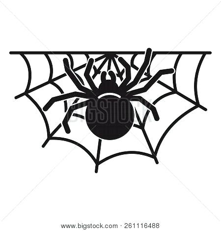 450x470 simple spider web drawing vector spider web spider vector web