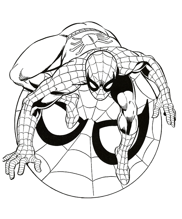 Spiderman Drawing Images