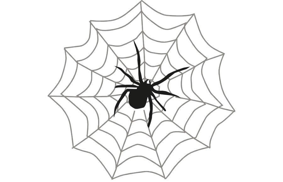 900x580 spiderman outline pictures spider man spider web b spider clip art