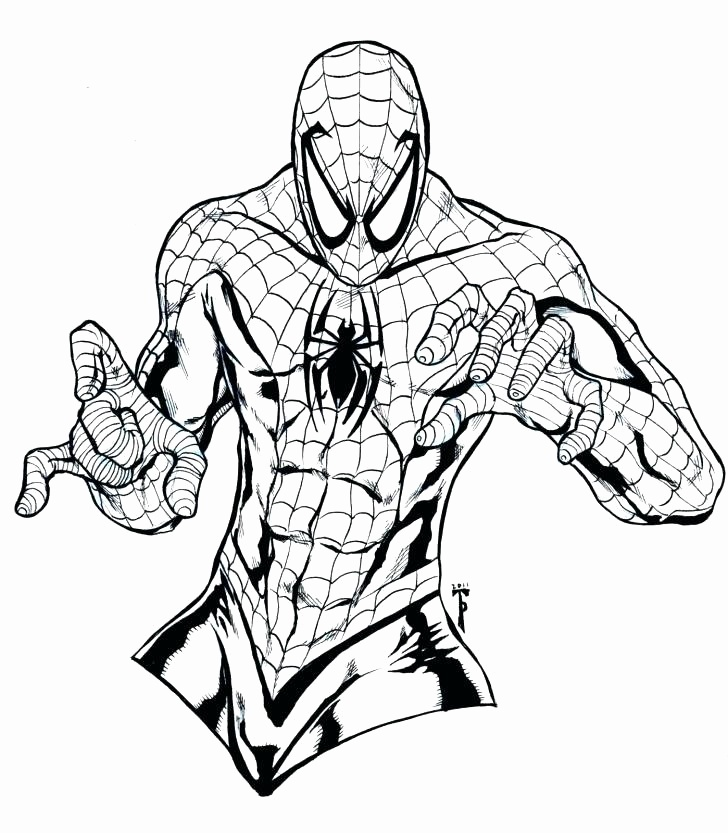 728x833 Venom Drawing Spectacular Spider Man For Free Download
