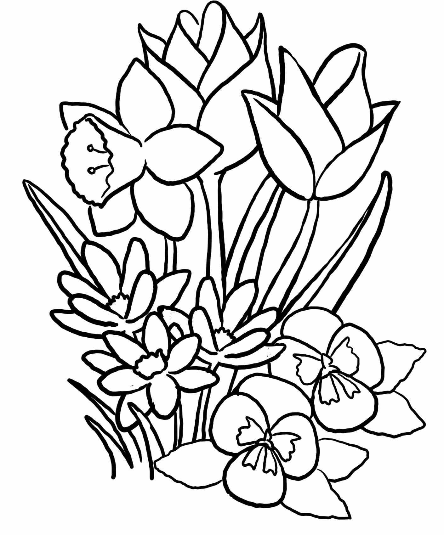 Spring Drawing Pictures
