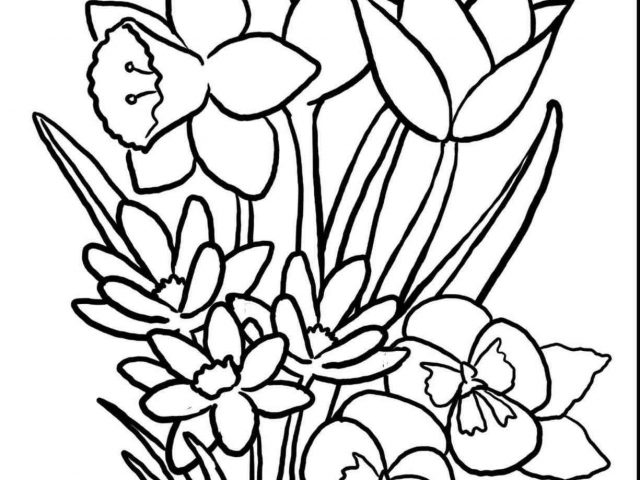640x480 The Images Collection Of Season Drawinfo Season Spring Drawing
