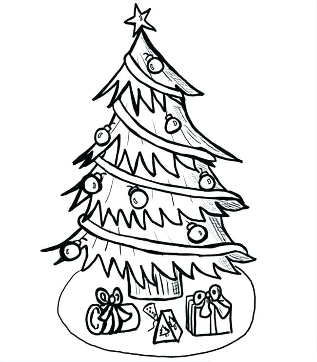 650x741 tree outline drawing tree outline draw vector tree outline drawing