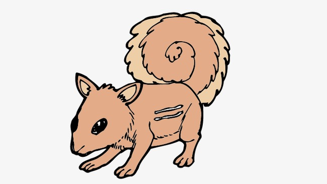 650x366 squirrel, cartoon squirrel, vector squirrel png and vector
