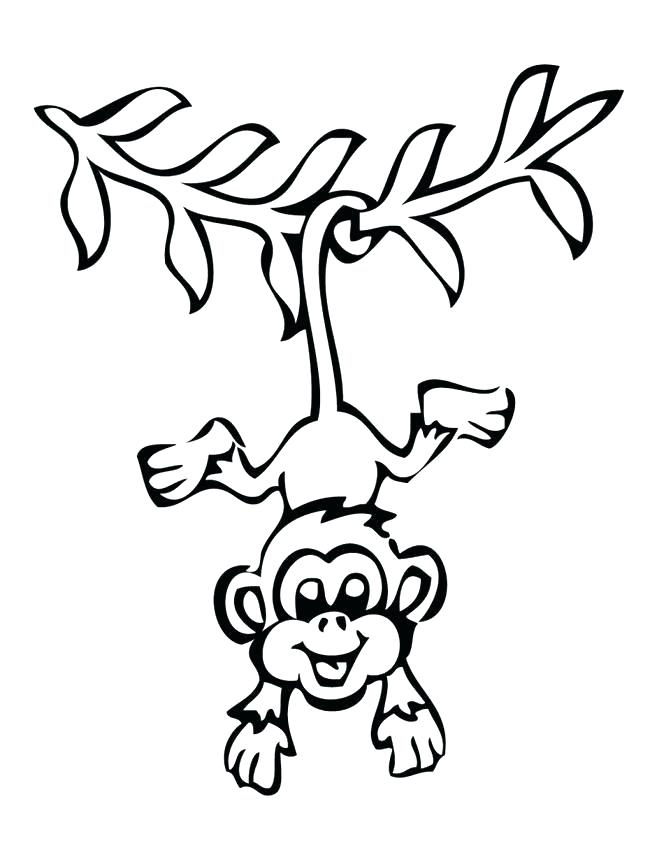 650x841 Monkey Easy Drawing Monkey Drawing Easy And Cute