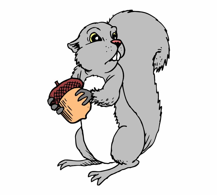 920x828 Squirrel Clipart