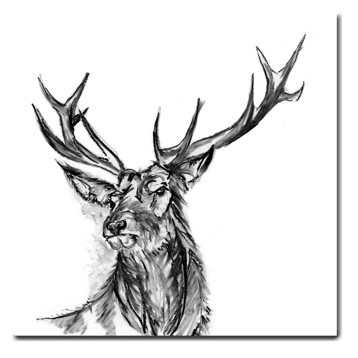 1250x1250 stanley the stag greeting card stag card blank inside etsy
