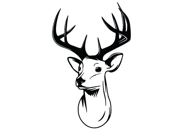 574x430 how to draw a easy deer simple deer drawing com draw a deer head