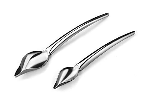 463x319 Dcrt Deco Spoon Precision Stainless Steel Chef Drawing