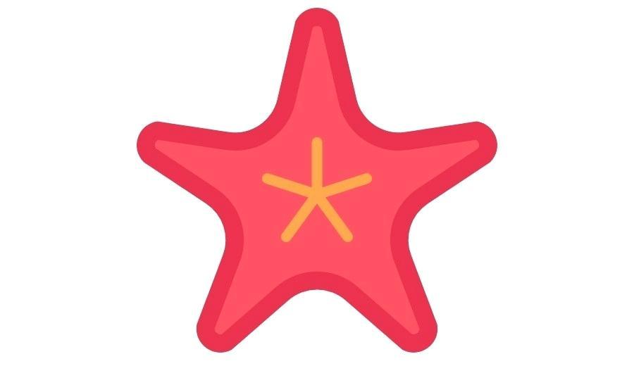 900x520 draw starfish starfish starfish shaped drawer pulls