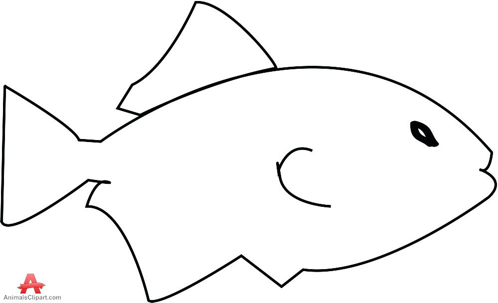 999x608 Fish Outline Stock Vector Star Images