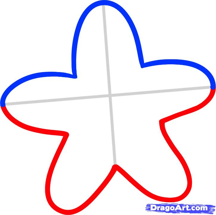725x722 How To Draw A Starfish For Kids, Step