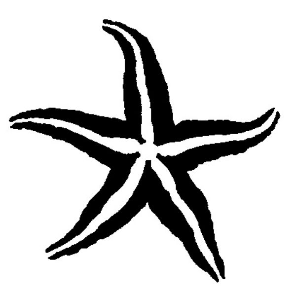 Starfish Outline Drawing