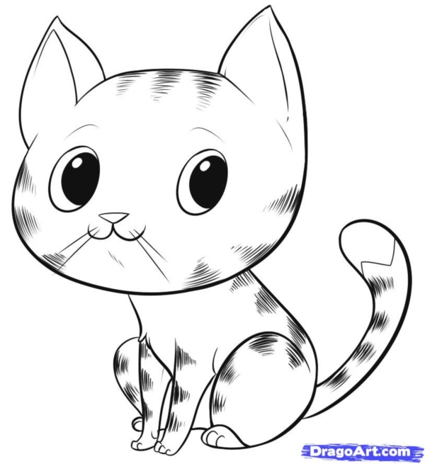 600x655 Simple Cat Drawing Examples Anyone Can Try