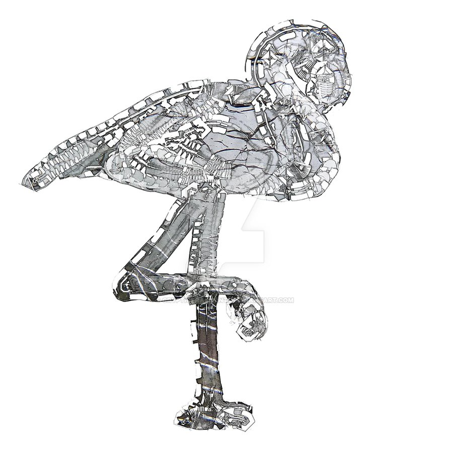 894x894 Flamingo Drawing Steampunk For Free Download
