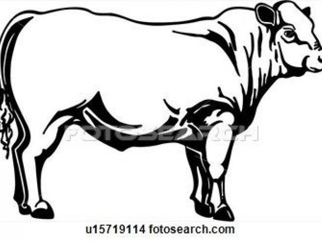 640x480 beef clipart beef steer