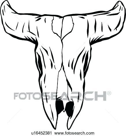 436x470 longhorn skull vector bulls longhorn skull longhorn skull vector