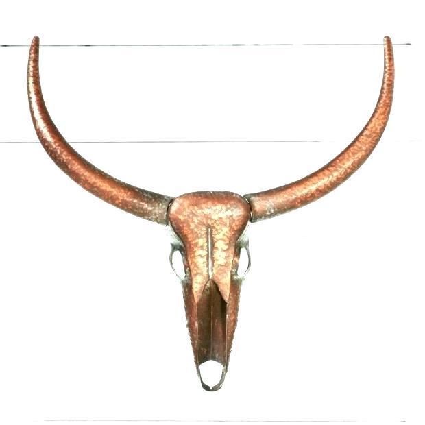 620x620 steer skull decor cow skull wall decor small cattle skull wall
