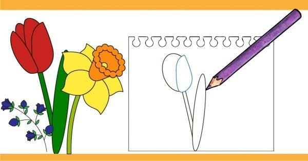 600x314 Learn How To Draw A Flower With An Easy Tutorial